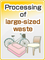 Processing of large-sized waste
